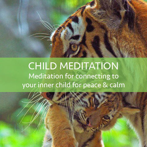 Inner Child Meditation Download (LEVEL 1)