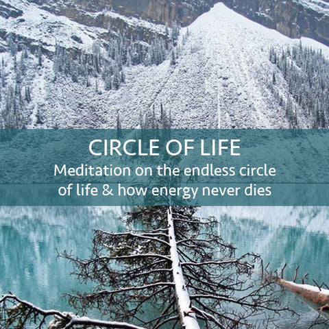 Circle of Life Meditation Download (LEVEL 1)