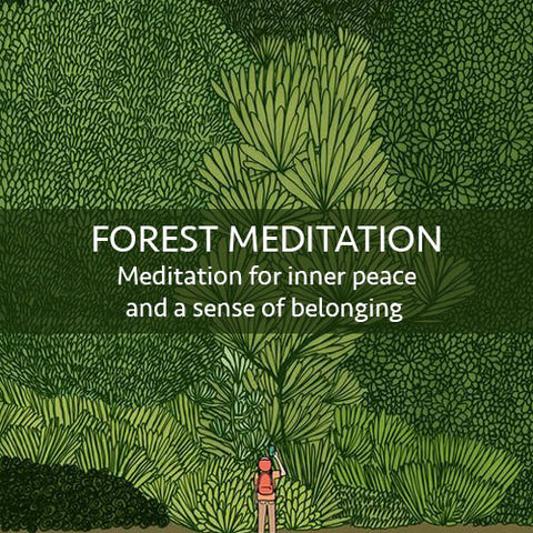 Forest Meditation Download (LEVEL 1)