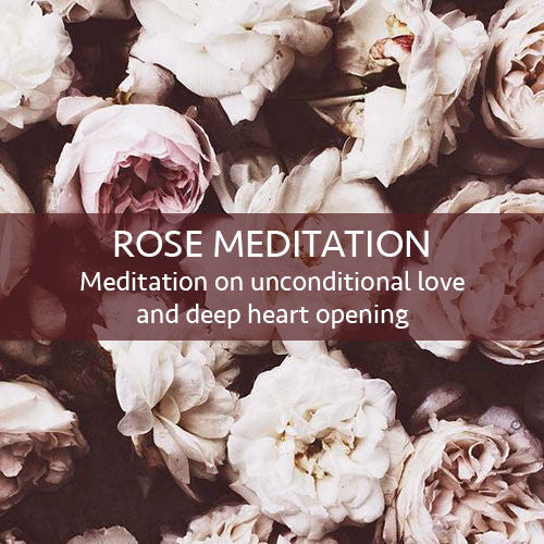 The Rose Meditation Download (LEVEL 1)