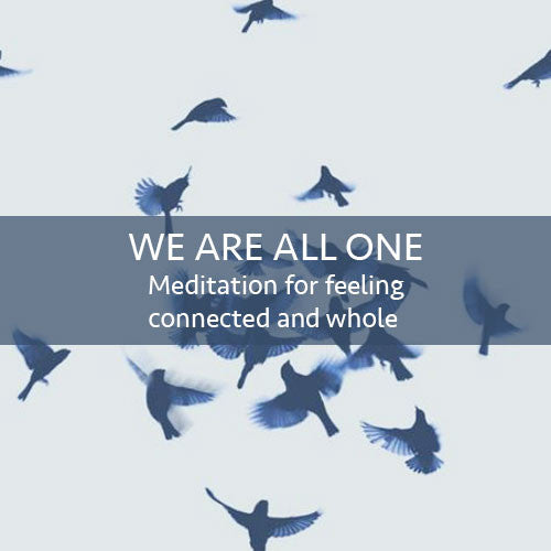 We Are All One Meditation Download