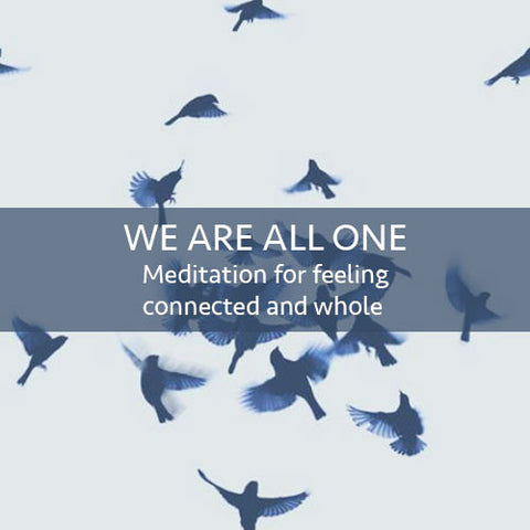 We Are All One Meditation Download (LEVEL 1)