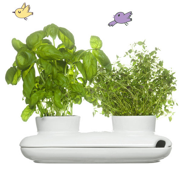 Duo Kitchen Farming Pot, White