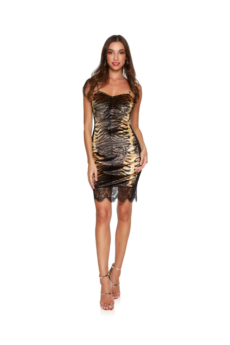 New-in, Main Collection, Emma in Animal print Lace Party Dress, Available in sizes XS - L, Next day delivery in Dubai, Fast shipping in UAE and international shipping available. Hi Maintenance - Online women's fashion boutique in United Arab Emirates.