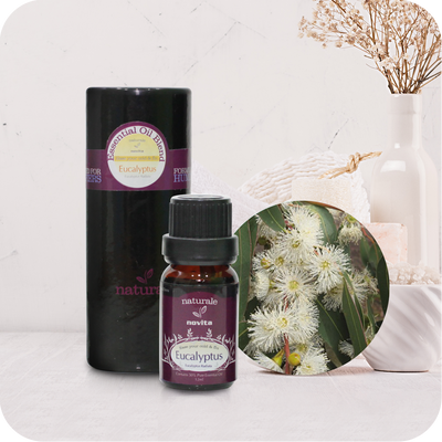 Essential Oil Blend Eucalyptus (15ml)