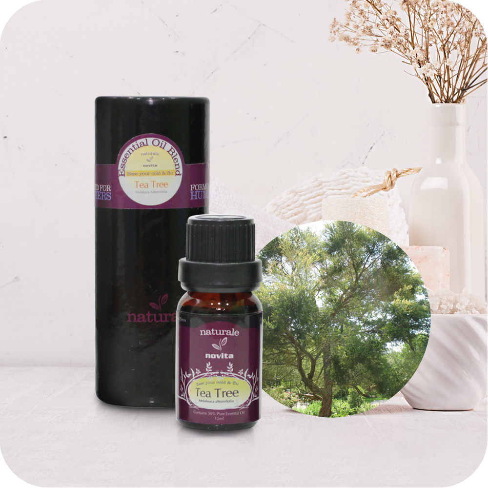 Essential Oil Blend Tea Tree (15ml)
