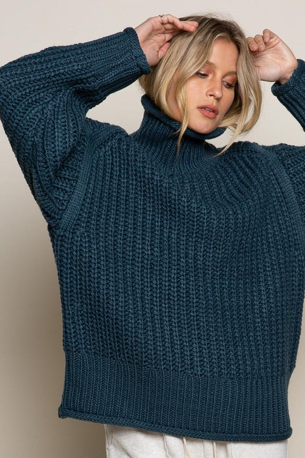 Chunky Ribbed Turtle Neck Sweater