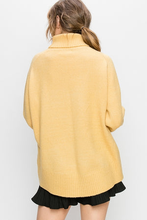 Banded Turtle Neck Sweater