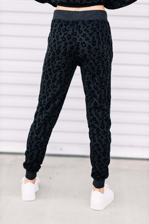 Z Supply Animal Flocked Jogger - Shop Amour Boutique Online