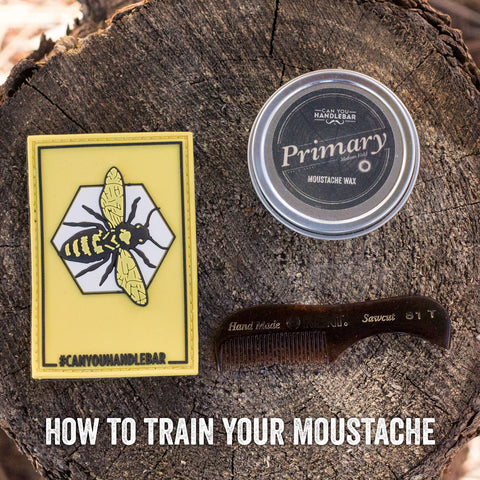 How To Train Your Moustache