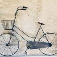 metal decorative ladies bike