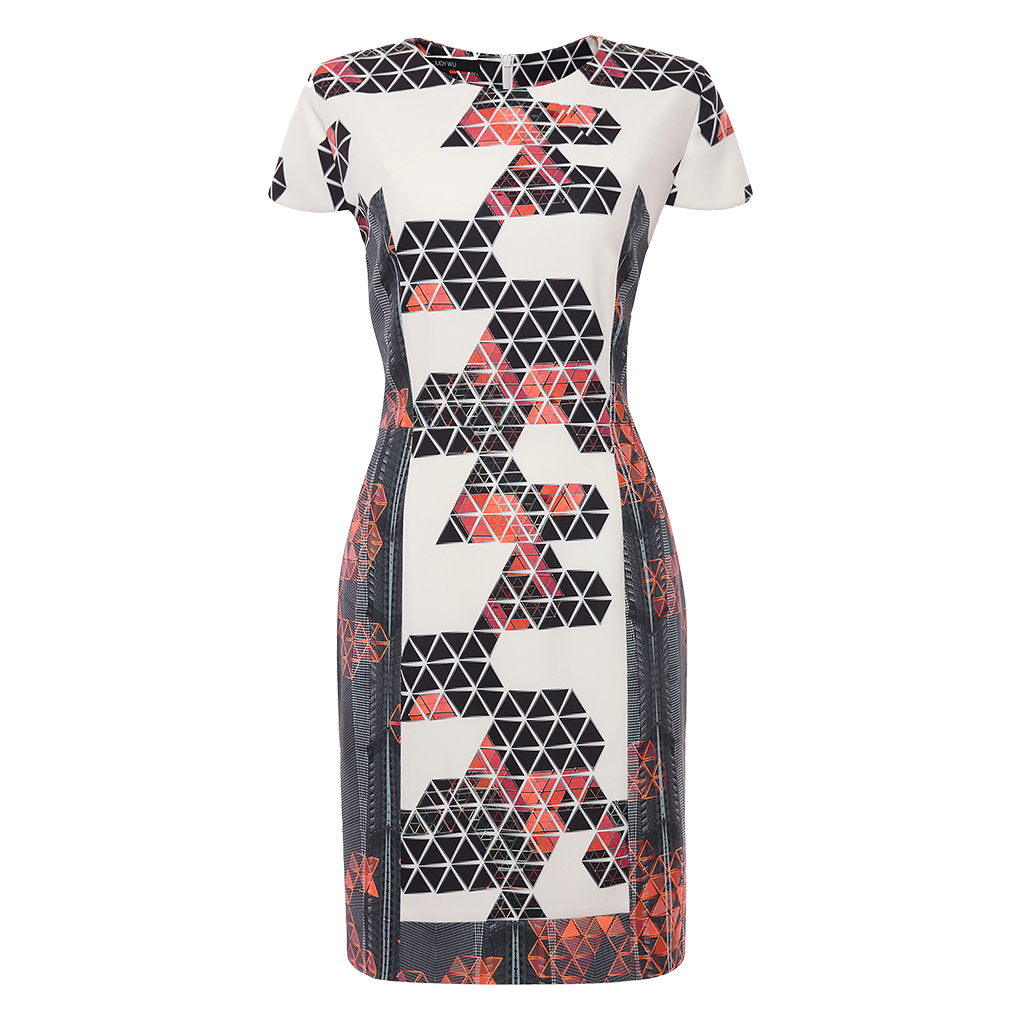 Printed Frame II Dress