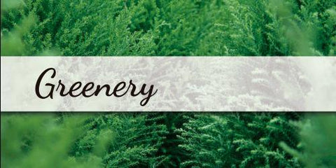 Greenery - Flower Type EbloomsDirect