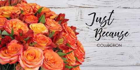 Just Because - Occasion EbloomsDirect