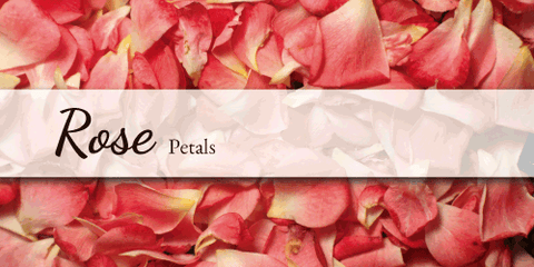 Rose Petals - Flower Type EbloomsDirect