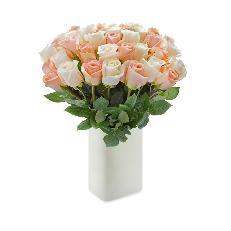 Love in a box 50 Roses Peach & White 50cm - Vase Included- EbloomsDirect