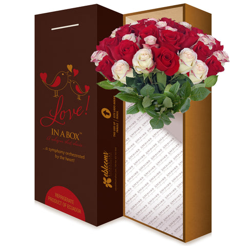 Love in a box 50 Roses Red & Bicolor White-Red 50cm - Vase Included- EbloomsDirect
