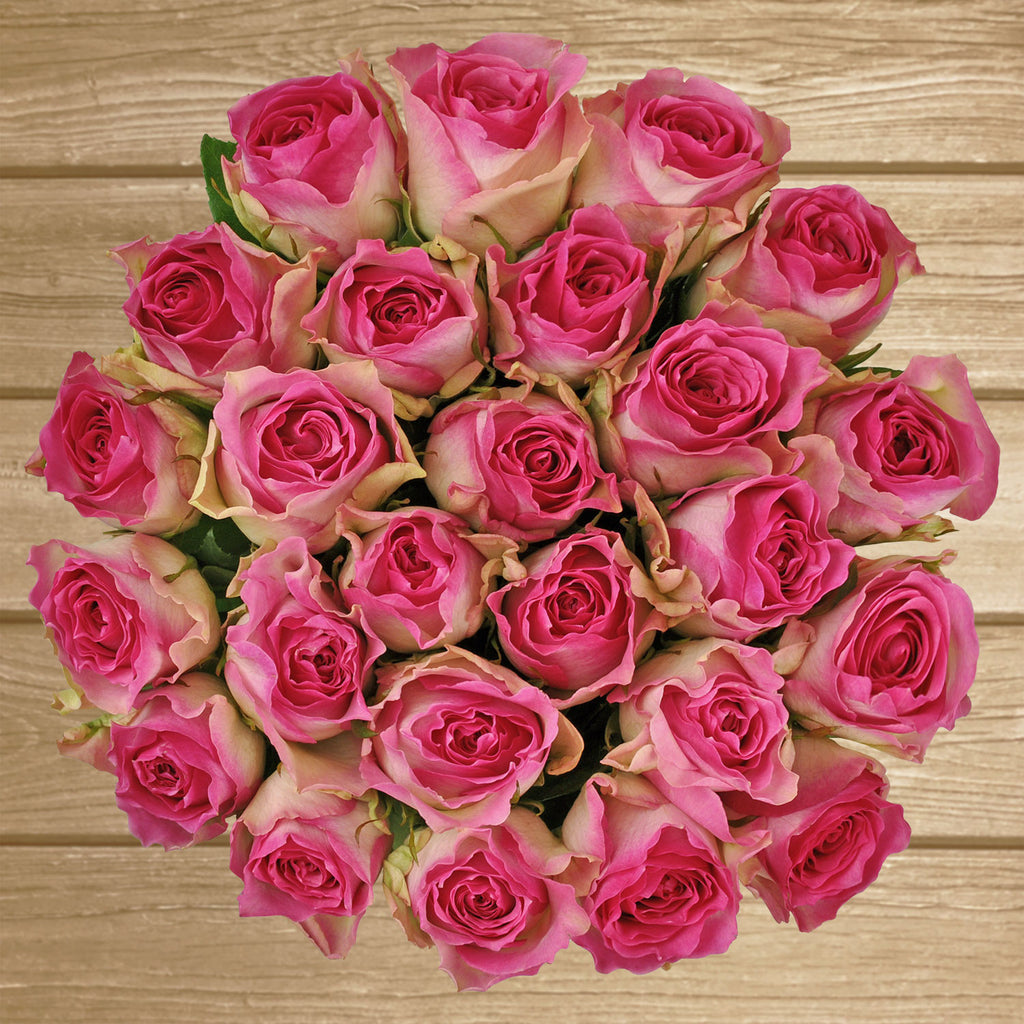 Bicolor pink roses the best flower arrangements centerpieces and bouquets to order online for any ocassion or wedding  and Valentine's day