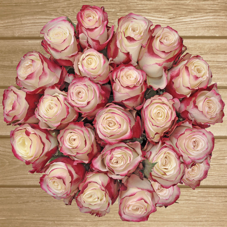 Roses Bicolor White and Red 50cm-  EbloomsDirect - Farm Fresh Weddings & Events 2019-2020✔