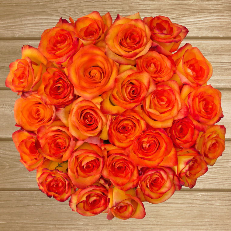 Roses Bicolor Yellow/Orange 50cm