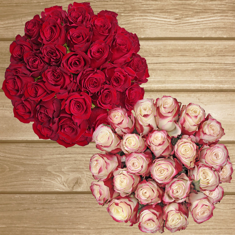Red & Bi-color Red/White Roses - EbloomsDirect Farm Fresh  Weddings & Events 2019-2020✔