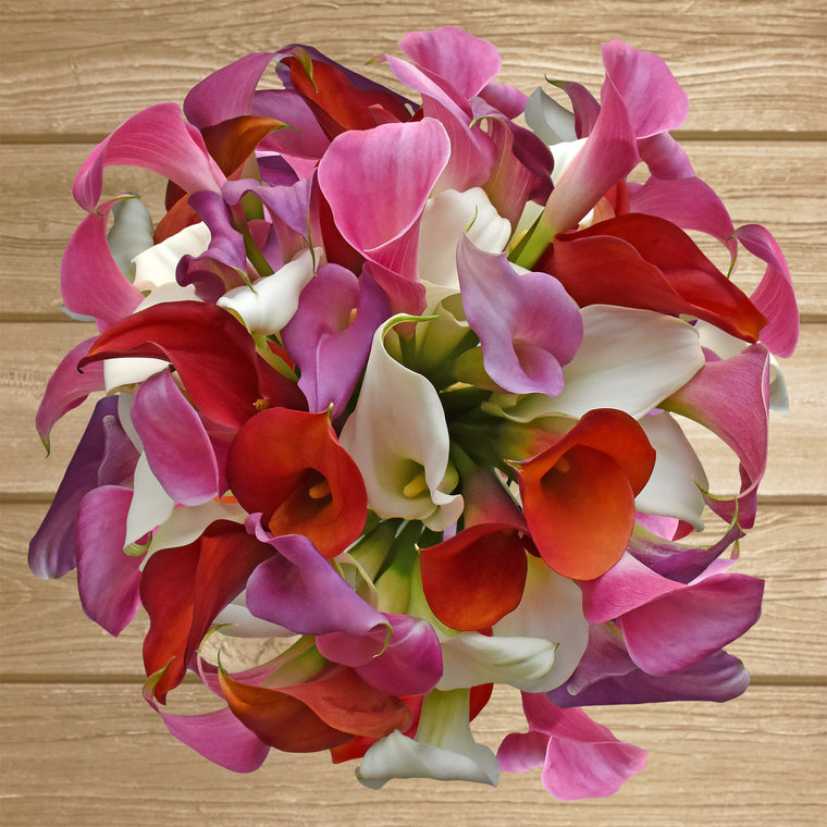 Mini Callas Multiple Colors Available - EbloomsDirect