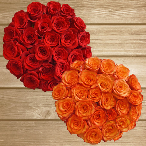 Roses Red and Bicolor Orange - EbloomsDirect