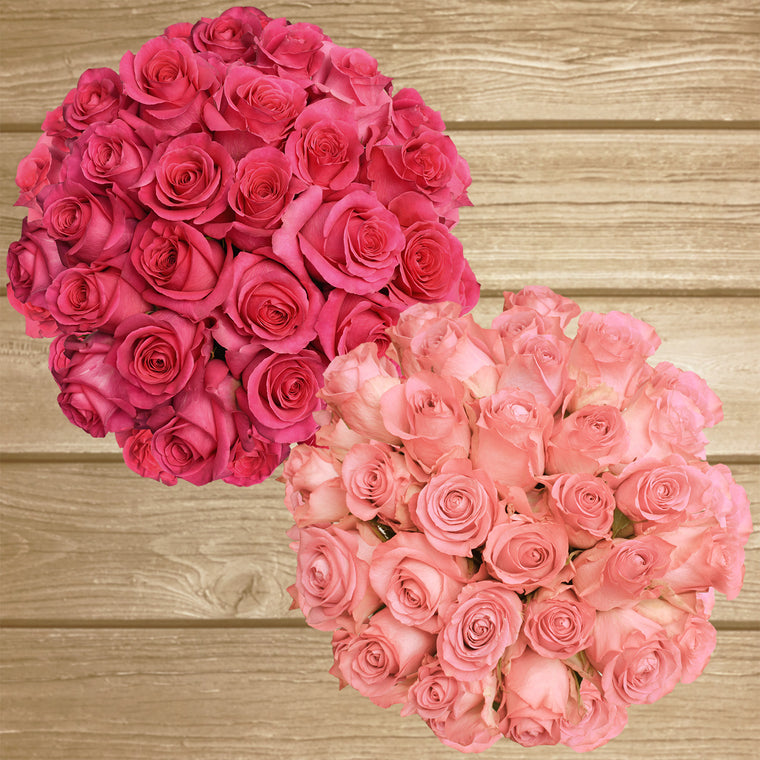 Roses Hot Pink & Light Pink 50cm