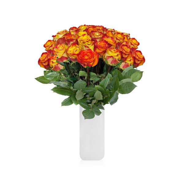 Rose Bouquet BiColor Yellow & Red THE CLASSIC BOUQUET - EbloomsDirect