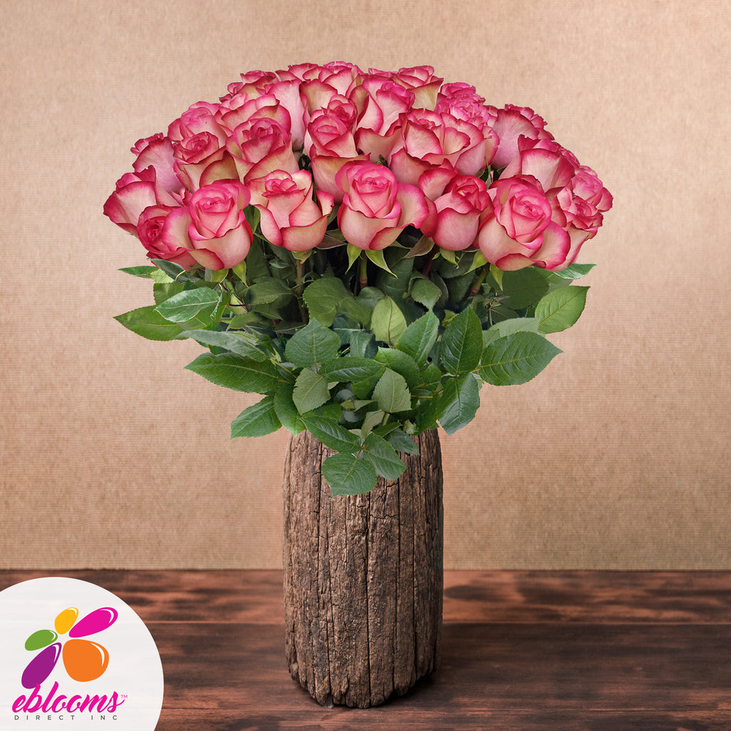 Bicoor pink roses the best flower arrangements centerpieces and bouquets to order online for any ocassion or wedding