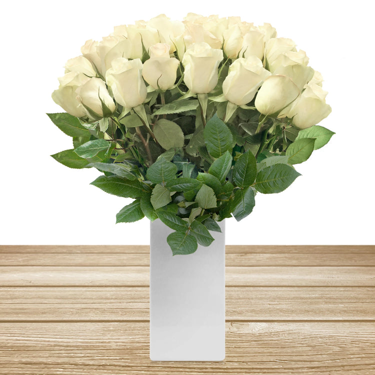 Roses Cream 60cm Long Stem Pack 100 Stems - EbloomsDirect