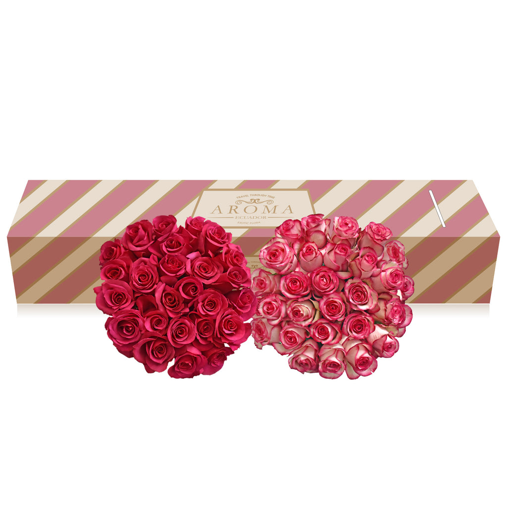 Rose Duo Hot Pink And Bicolor Pink Ebloomsdirect