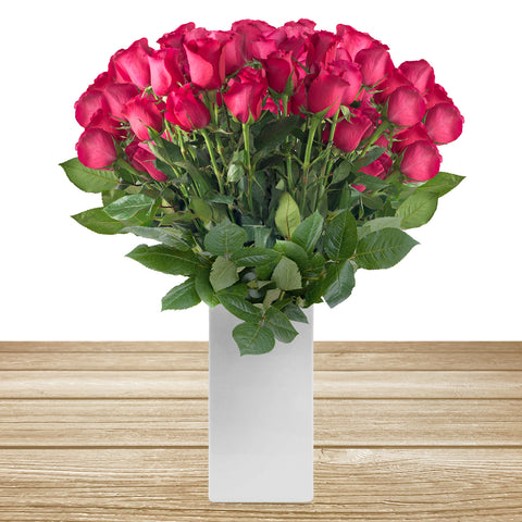 Roses Hot Pink 60cm Long Stem Pack 100 Stems - EbloomsDirect