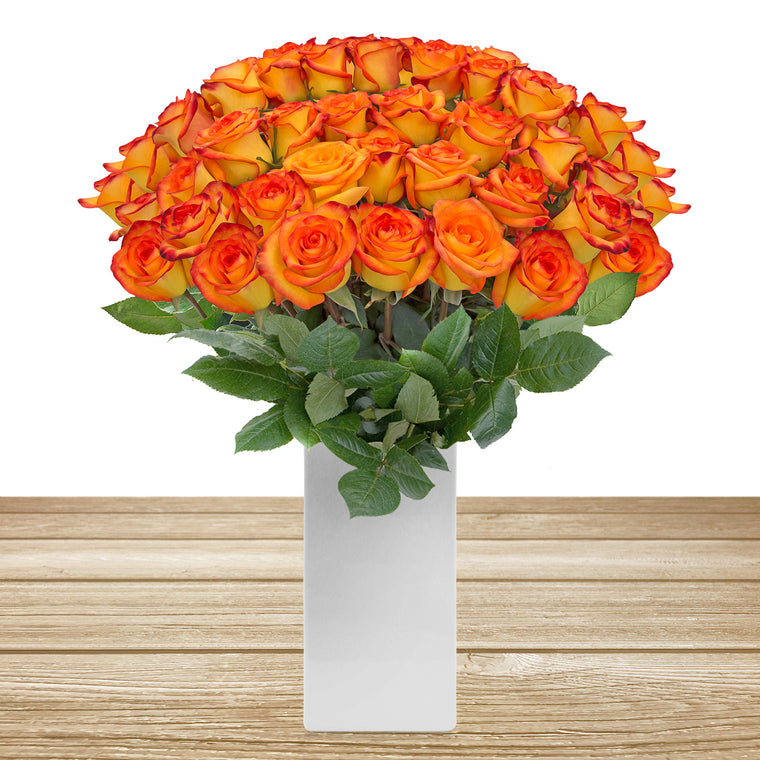 Roses Bicolor Yellow & Orange 60cm Long Stem Pack 100 Stems- EbloomsDirect