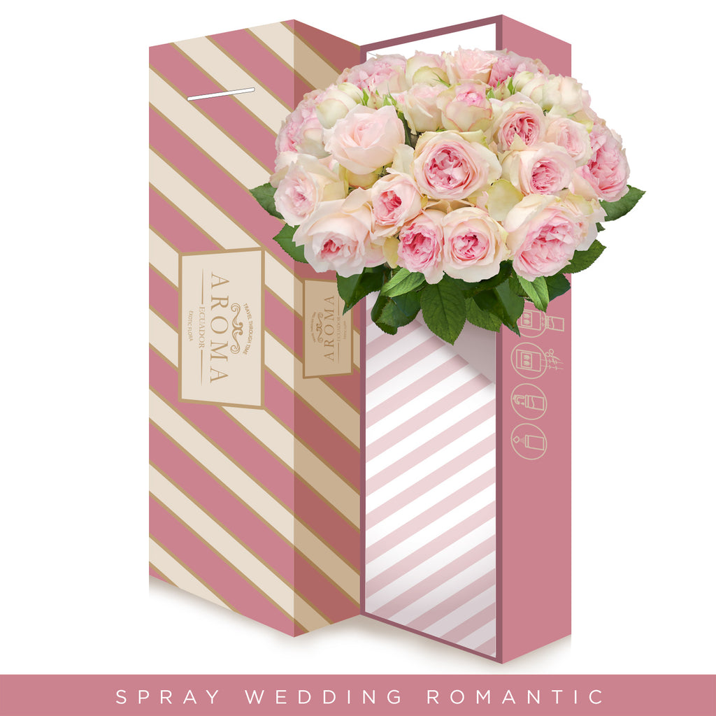 Spray Garden Roses - wedding romantica - Scented Roses - wholesale roses -English Roses - EbloomsDirect