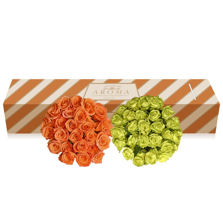 Orange and Green Roses - EbloomsDirect Fresh Weddings & Events 2019-2020✔