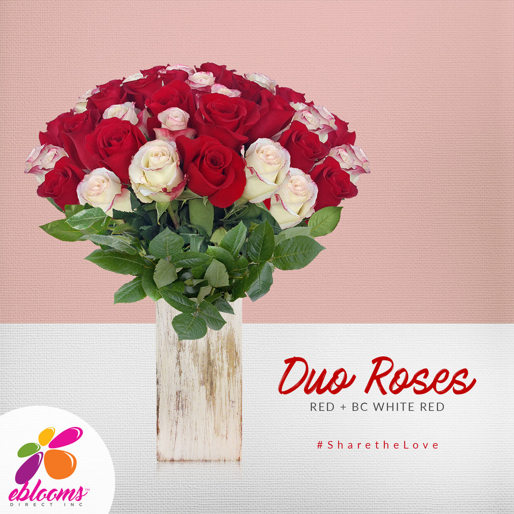 Duo Red and bicolor white Red roses the best flower arrangements centerpieces and bouquets to order online for any ocassion or wedding  and Valentine's day