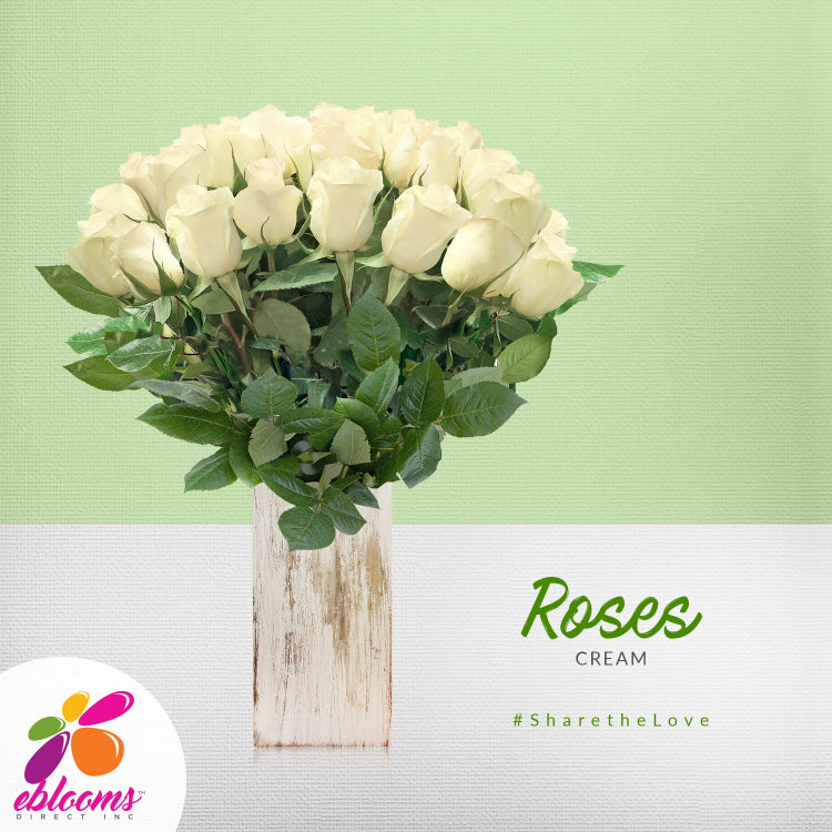 White cream ivory roses the best online flower arrangements to order online for any ocassion  and Valentine's day