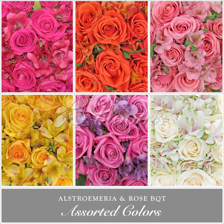 Rose & Alstroemeria Assorted Monochromatic Pack 8 Bouquets - EbloomsDirect
