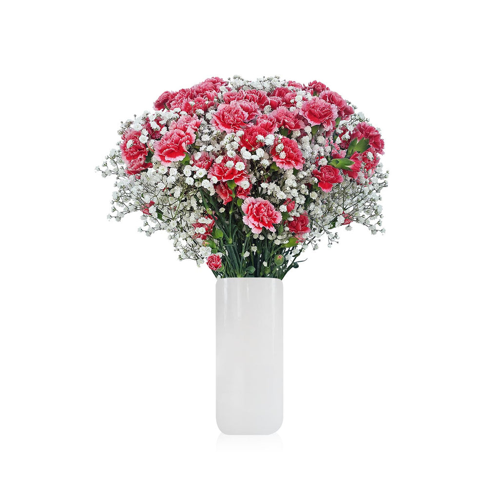 Carnation and Gypsophila light mixed www.ebloomsdirect.com