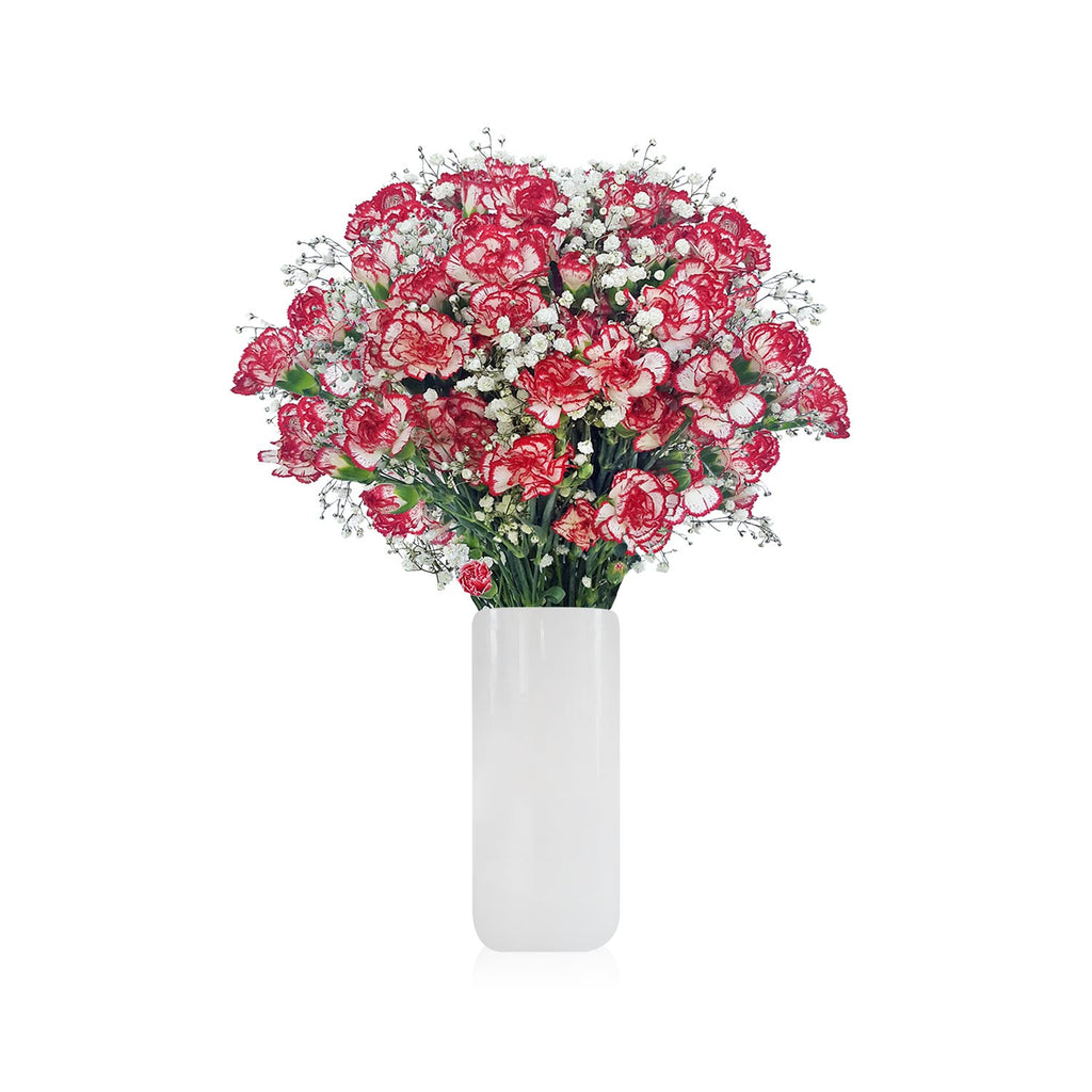 Mini Carnation & Baby breath Bicolor White Red Bouquet Pack 6 - EbloomsDirect