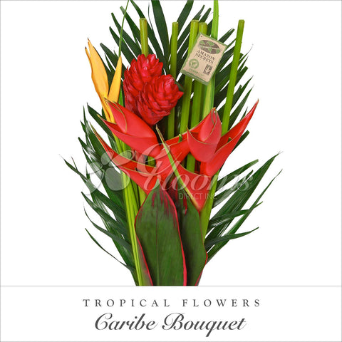 Tropical Bouquets - EbloomsDirect
