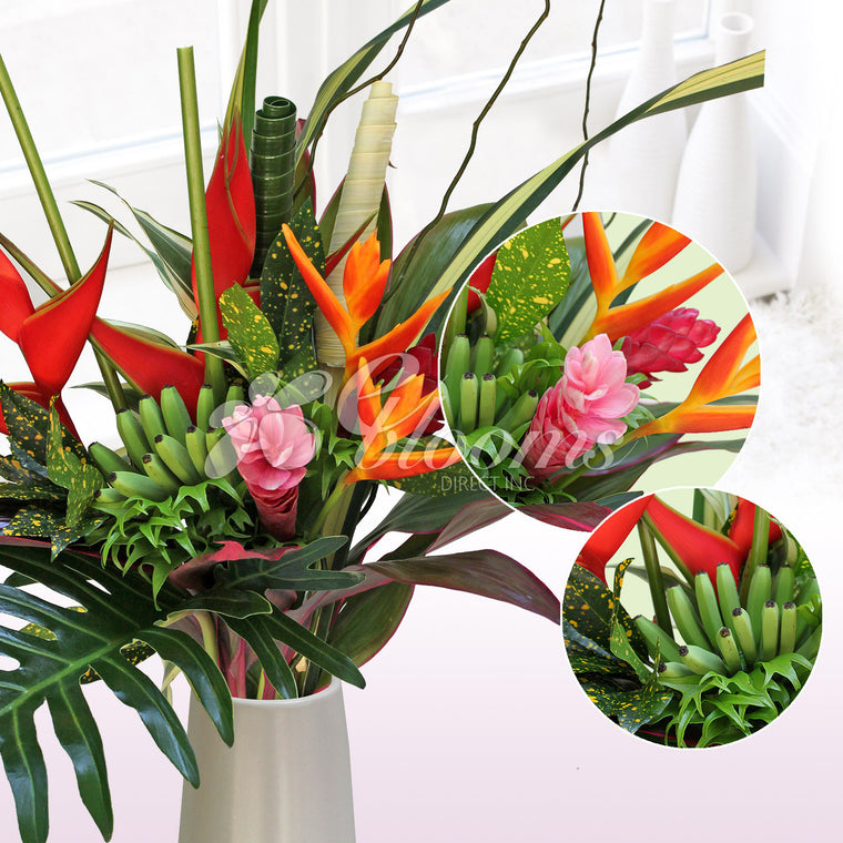 Celebrate Tropical Bouquet - EbloomsDirect