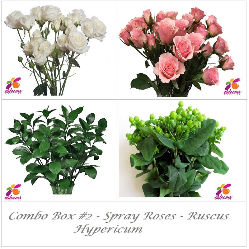 Bulk Flowers Combo Box #2 - Spray Roses Coral Pink - Ruscus - Hypericum