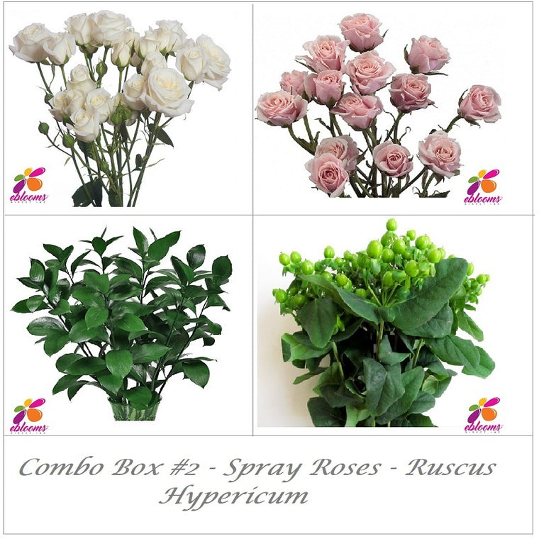 Bulk Flower Combo Box 2- Spray Roses - Hypericum - Ruscus - EbloomsDirect