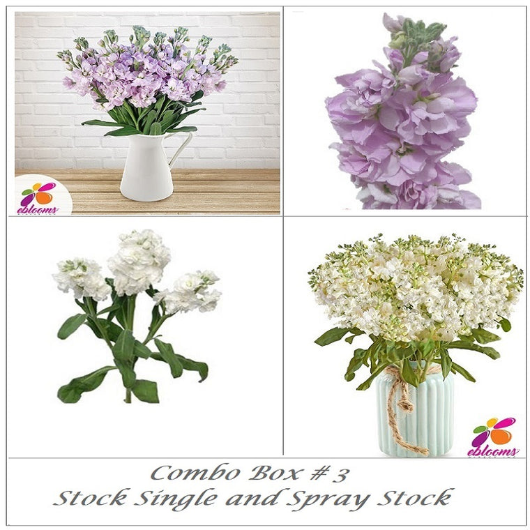 Bulk Flower Combo Box 3- Stock Single and Spray Stock - EbloomsDirect