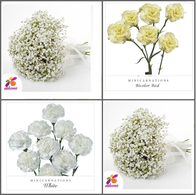 Combo Box #8 - Baby's Breath and Mini Carnation Yellow