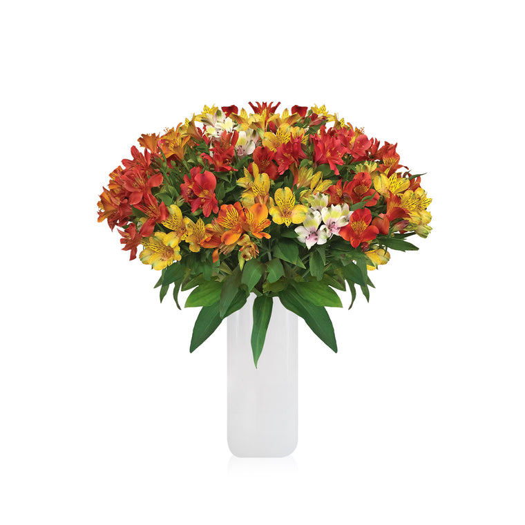 Alstroemeria Bouquet Seasonal
