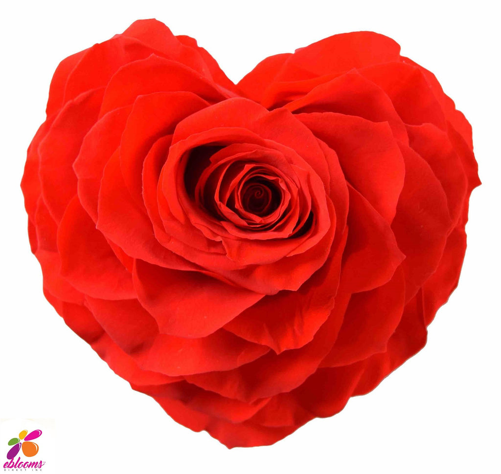 Preserved Flower Red heart roses - wholesale rose