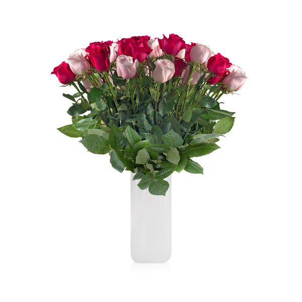 25 CLASSIC ROSE BOUQUET Hot Pink & Ligth Pink Duo